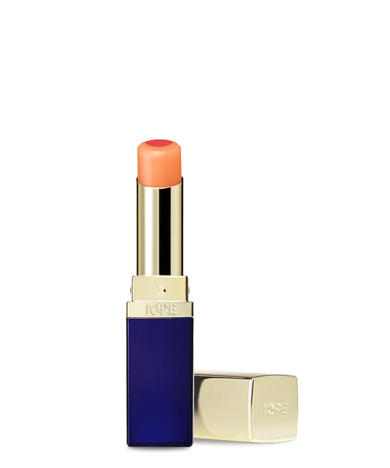 IOPE MAKEUP DUAL LIP BLENDER